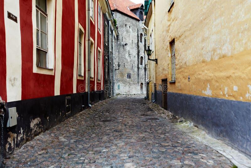 Gammal gata av Tallinn Estland royaltyfria foton