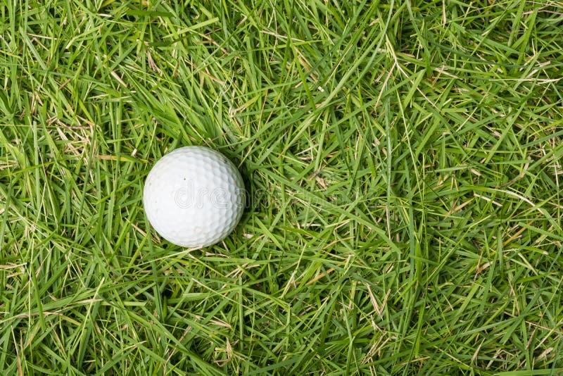 Gammal golfboll på grönt gräs arkivbild