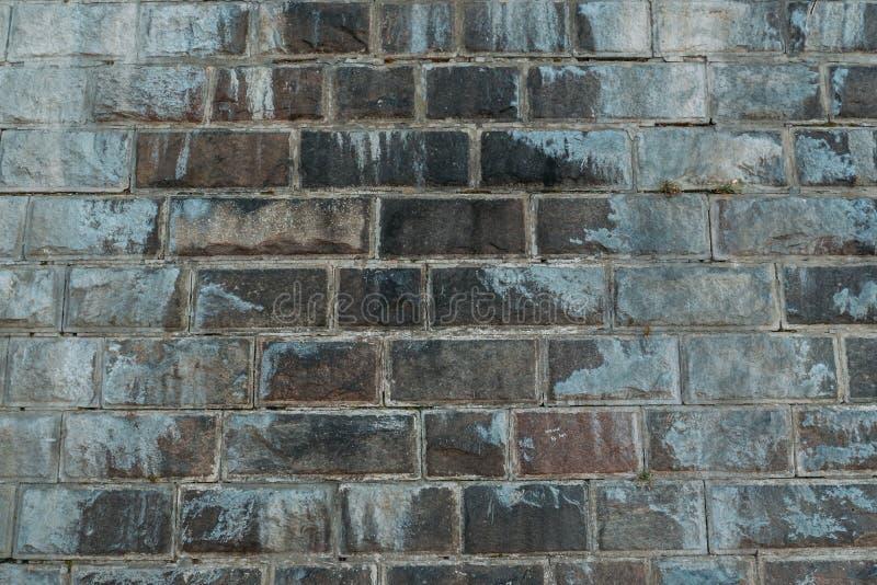 Gammal grå tappning red ut textur för tegelstenvägg av den forntida slotten Grungebusekvarteret gör envist motstånd, modellen för arkivbild