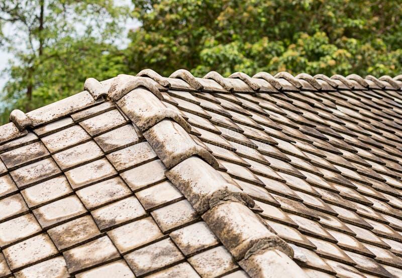 Gammal härjad av väder och vind keramisk grå del för tegelplattatak av materien för byggnad för eco för design för material för k royaltyfri bild