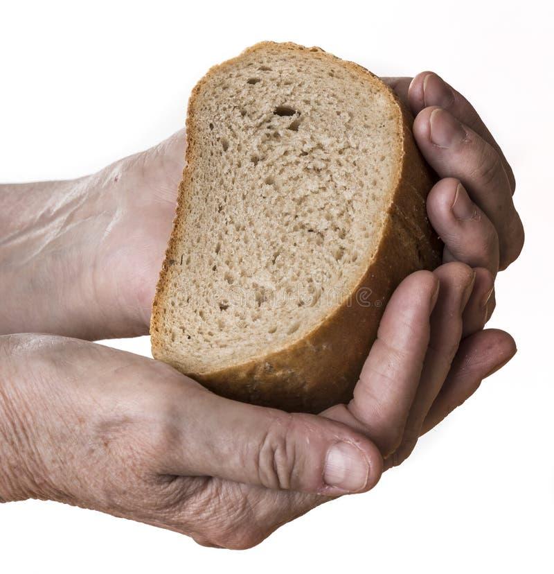 Gammal hand med bröd royaltyfria bilder