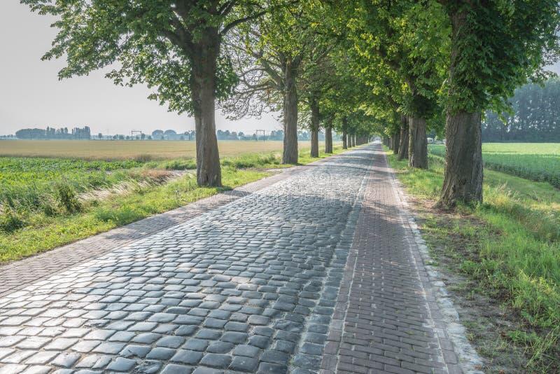 Gammal holländsk landsväg med autentiska kullersten fotografering för bildbyråer