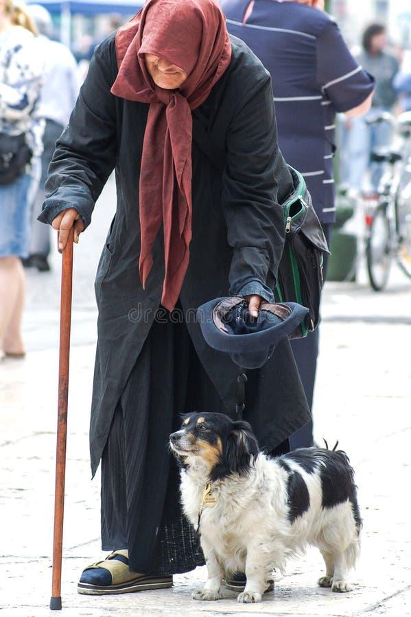 Gammal italiensk tiggare med hennes hund arkivbilder