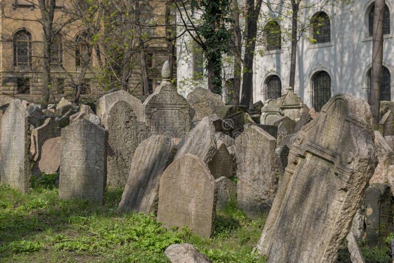 Gammal judisk kyrkogård i Josefov, Prague, Tjeckien royaltyfria foton