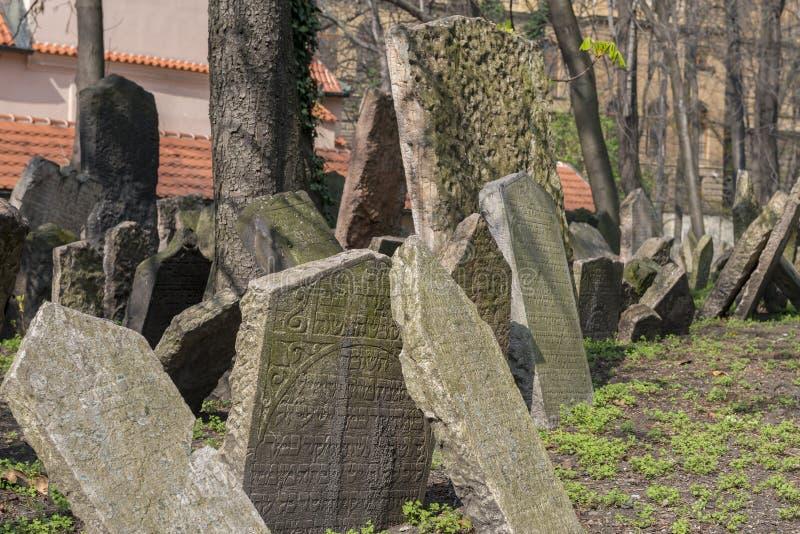 Gammal judisk kyrkogård i Josefov, Prague, Tjeckien fotografering för bildbyråer