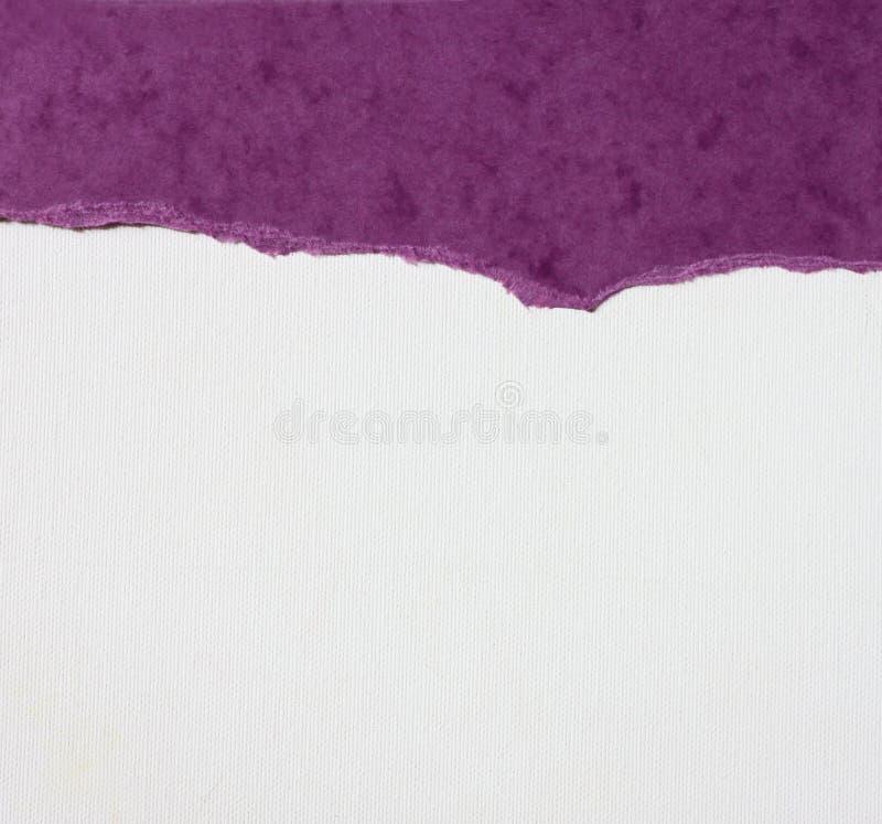 Gammal kanfastexturbakgrund med den delikata bandmodellen och sönderrivet papper för lilatappning royaltyfria bilder
