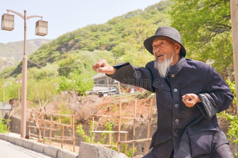 Gammal kinesisk man Kung Fu Demonstration 2 royaltyfria foton