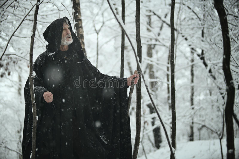 Gammal klok man i mörk skog royaltyfri bild