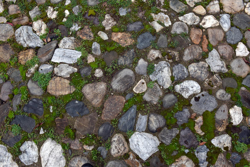 Download Gammal Kullerstenbakgrund Med Gräs Fotografering för Bildbyråer - Bild av stuckatur, struktur: 78732317
