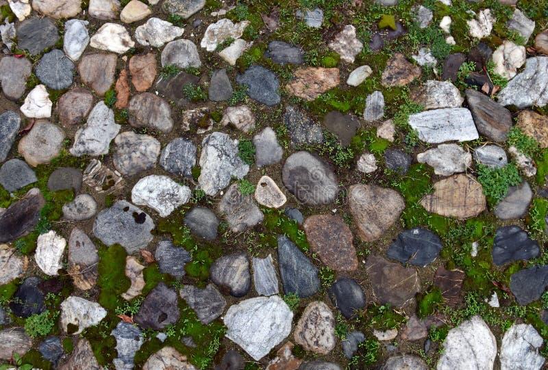 Download Gammal Kullerstenbakgrund Med Gräs Arkivfoto - Bild av sprucket, gräs: 78732340