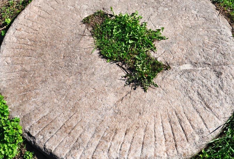 Gammal kvarnsten som ligger i gräset arkivfoto