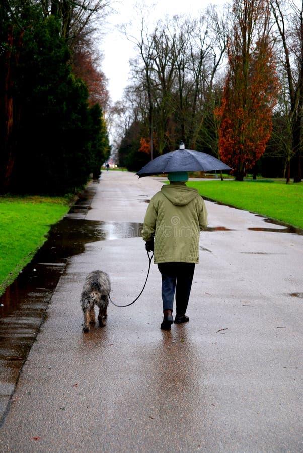 gammal kvinna för hund fotografering för bildbyråer