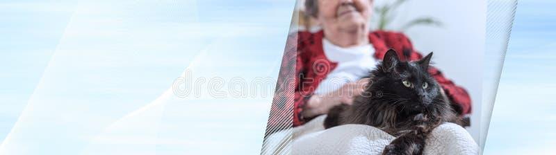 Gammal kvinna med hennes katt; panorama- baner arkivfoto