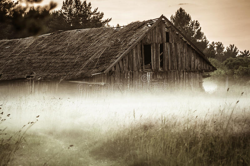 Gammal ladugård i dimmigt fält arkivbilder