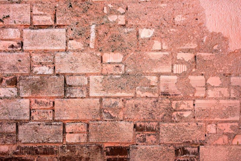 Gammal målad tegelstenvägg arkivbilder