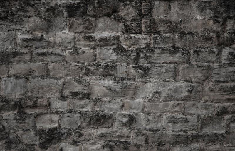 Gammal mörk cementvägg i den gråa färgen royaltyfri fotografi