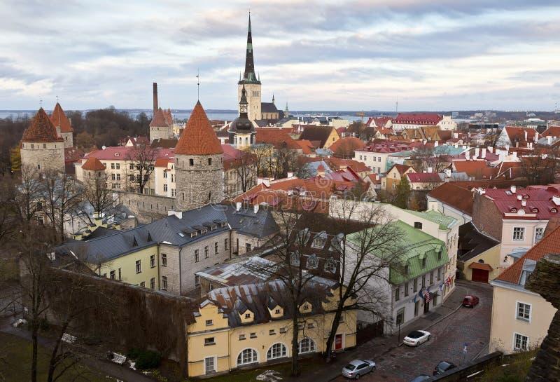 Gammal medeltida stad av Tallinn, Estland från den Patkuli synvinkeln arkivfoto
