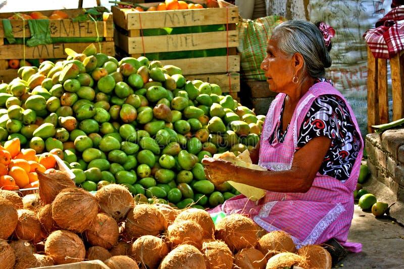 Gammal mexikansk kvinna som säljer frukter på marknaden fotografering för bildbyråer