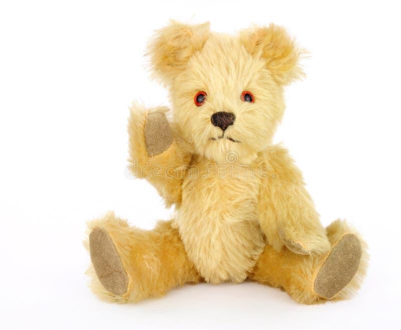 gammal nalle för björn royaltyfri bild