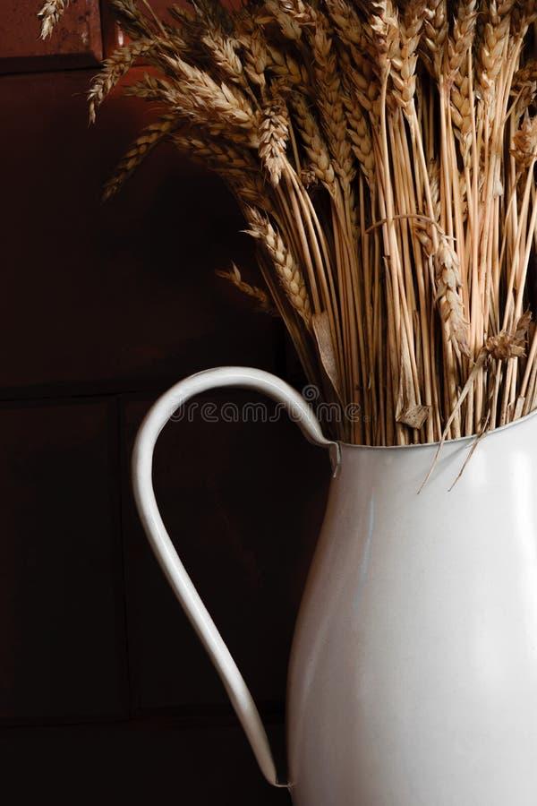 Gammal och vit lantlig kanna med torr råg som är främst av den bruna väggen arkivfoton
