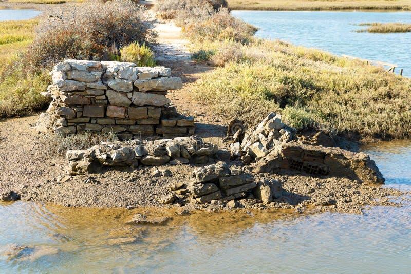 Gammal pelare i lagun av riaen formosa på lågvatten royaltyfri fotografi