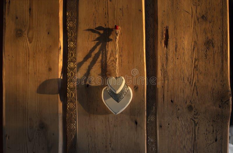 Gammal plankaträdörr royaltyfri fotografi