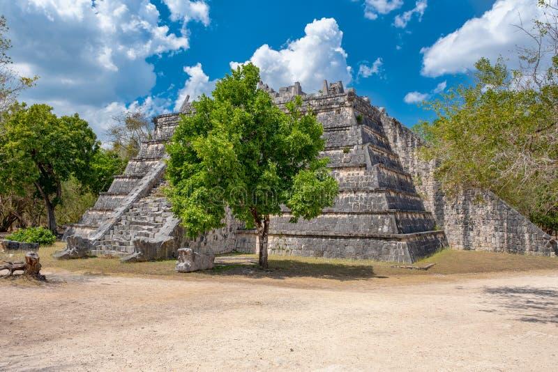 Gammal pyramid i djungeln på den forntida mayan staden av Chichen Itza arkivfoton