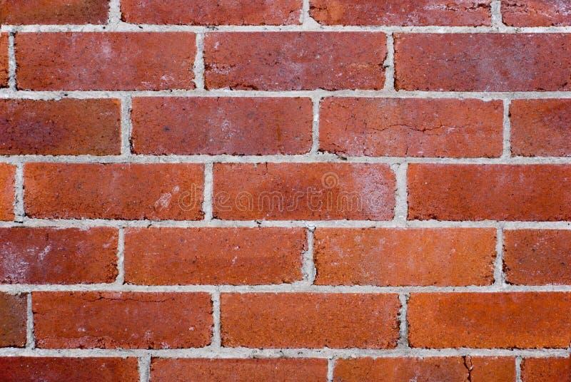 Gammal röd tegelstenvägg royaltyfri bild