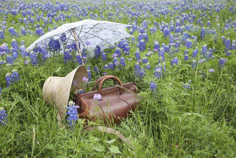 Gammal resväska, hätta och slags solskydd i ett fält av bluebonnets arkivfoton