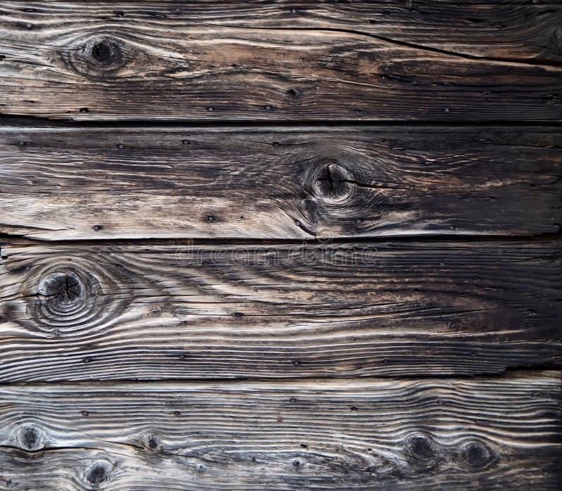 Gammal riden ut wood yttersidatextur med litet rostigt spikar huvud arkivfoto