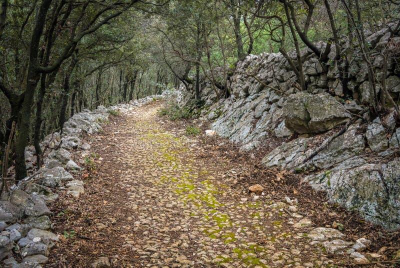 Gammal roman väg nära Cres i Kroatien fotografering för bildbyråer