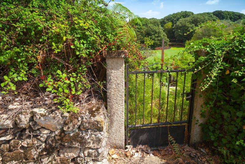 Gammal rostad trädgårds- port med järnkorset royaltyfri bild