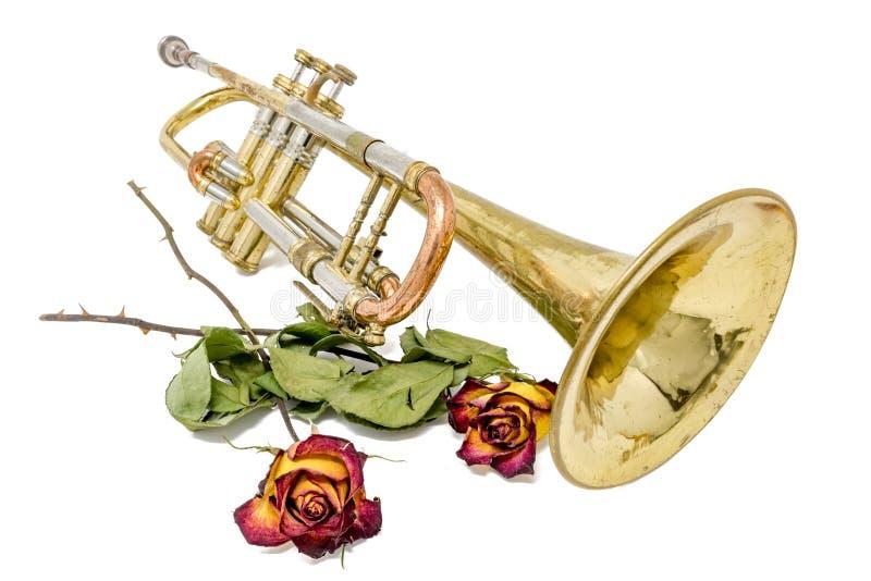 Gammal rostad trumpet med torkade rosor som isoleras på vit royaltyfri foto