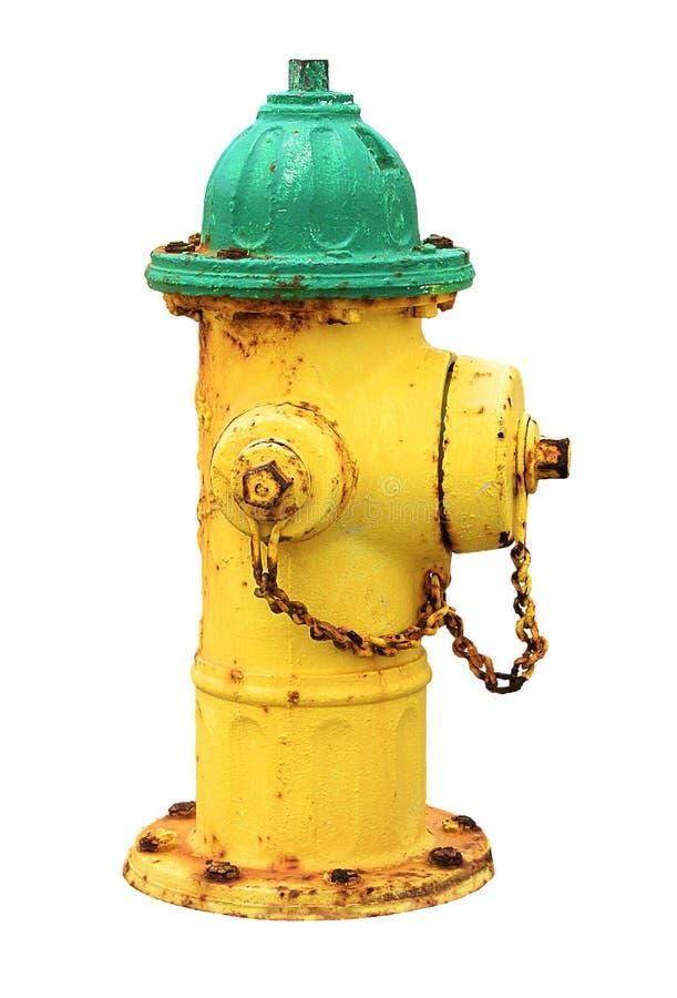 Gammal rostig amerikansk brandpost för gul gräsplan som isoleras på vit bakgrund Gult och grönt vattenpostvatten royaltyfri foto