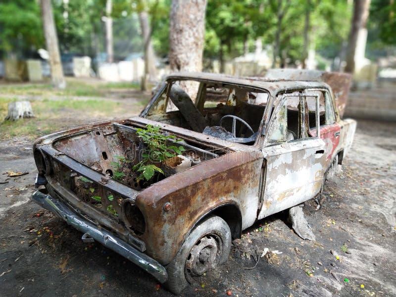 Gammal rostig bil Avtomobile arkivbilder
