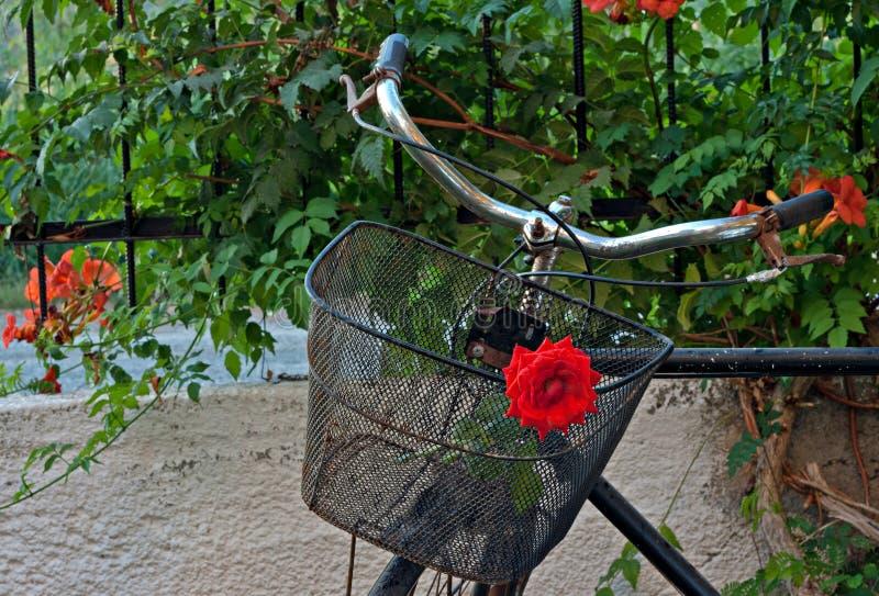 Gammal rostig cykel med främre korg 1 för ro arkivfoto