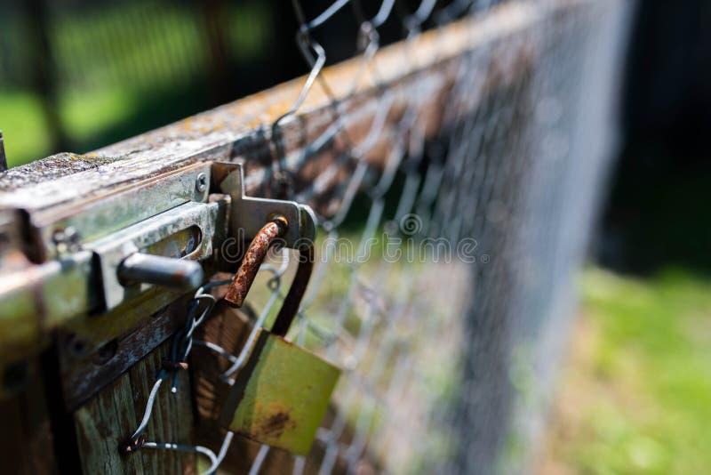 Gammal rostig hänglås på det band trädgårdstaketet, grunt djup av fältet fotografering för bildbyråer