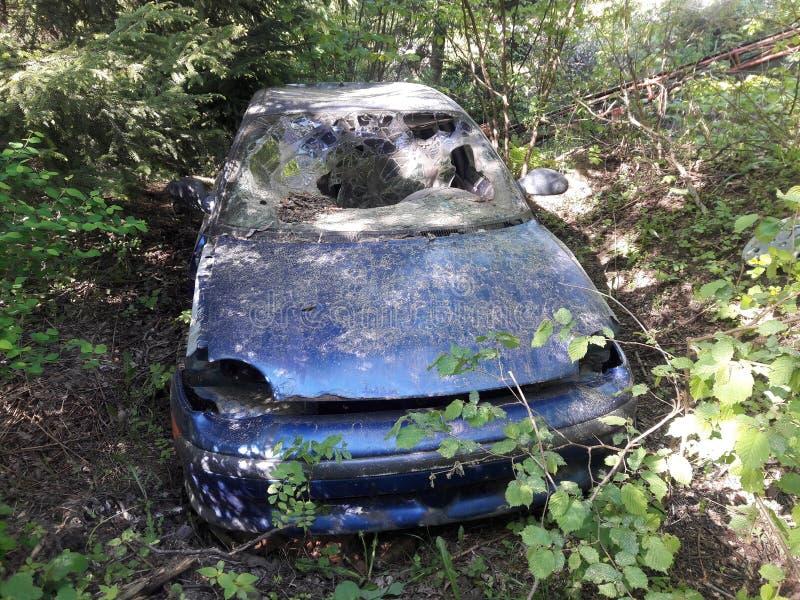 Gammal skeppsbruten bil i mitt av en buske fotografering för bildbyråer
