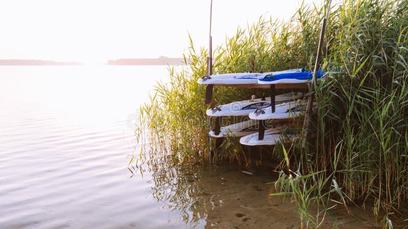 Gammal-skola vindsurfa bräden på kusten royaltyfri fotografi