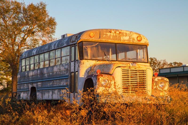 Gammal skolbuss i fält arkivbilder
