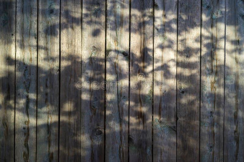 Gammal skrapad träbrädebakgrund med skuggor royaltyfri fotografi