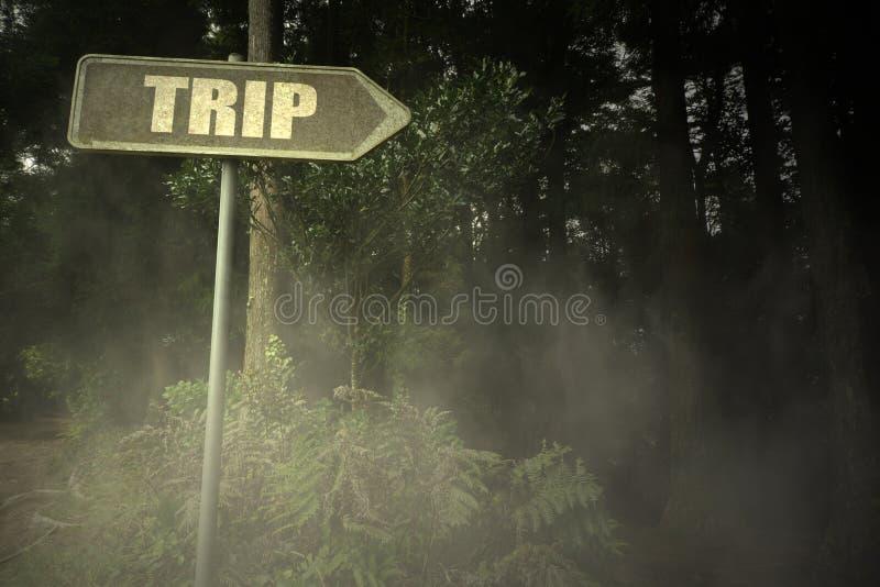 Gammal skylt med texttur nära den illavarslande skogen arkivfoto