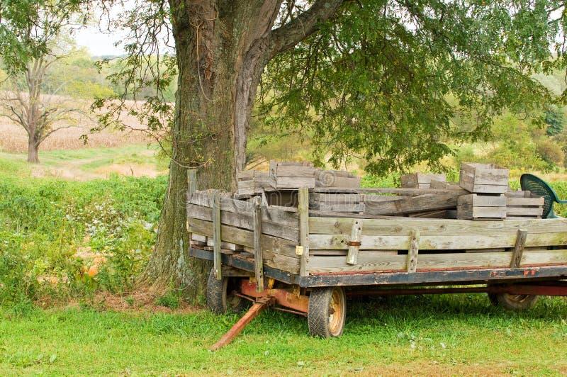 gammal släpvagn för lantgård royaltyfri bild