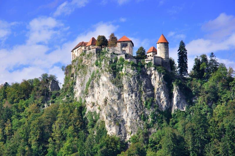 Gammal slott, i blött royaltyfri fotografi