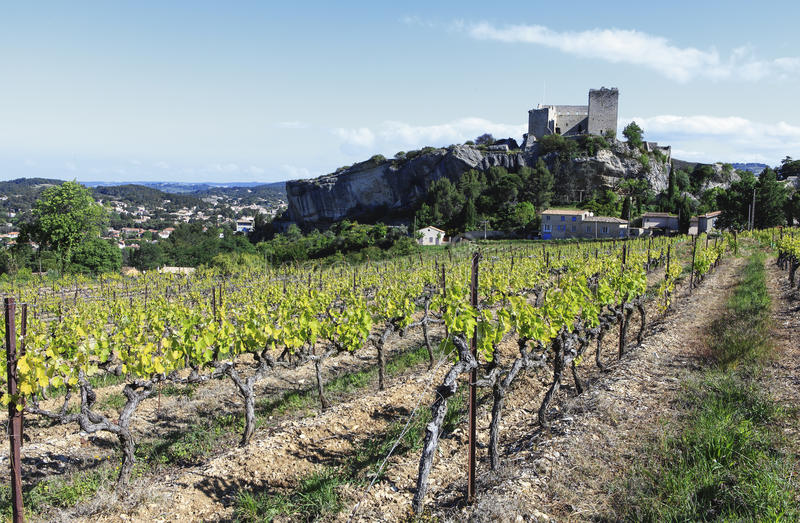 Gammal slott och vingård arkivbild