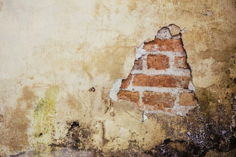 Gammal smutsig och grungy packad väggfasad av ett övergett hus med ett hål som visar de bakomliggande röda tegelstenarna royaltyfri fotografi