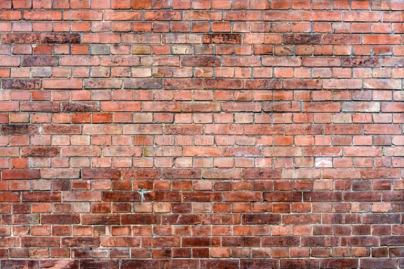 Gammal smutsig vägg av röd tegelsten fotografering för bildbyråer