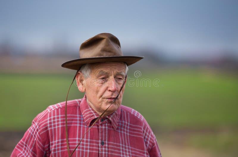 gammal stående för bonde royaltyfri foto