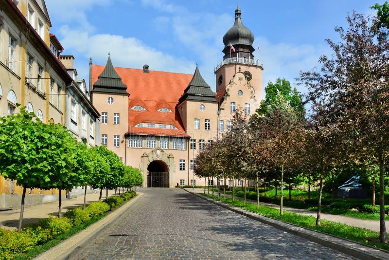 Gammal stad av Elblag, Polen Stadshus royaltyfria foton