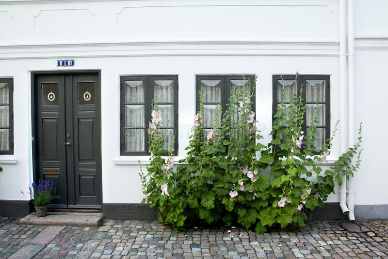 Gammal stad av Odense, Danmark arkivfoton